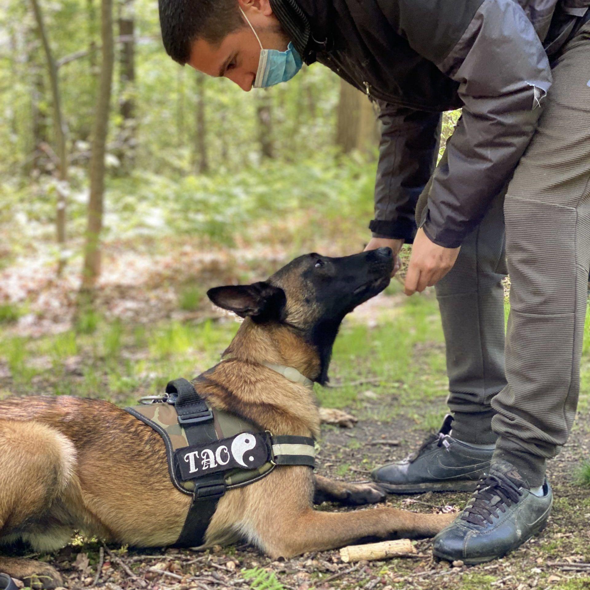 Club Canin de la plaine de Jouars Yvelines 78 Educhien78 Education canine Educateur canin Dressage chien dresseur Alexis Bonnarang
